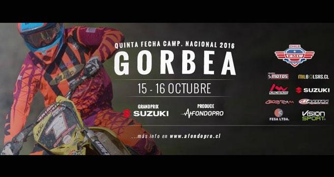5 fecha Gorbea